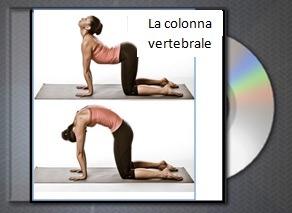 copertina yoganostress la colonna vertebrale