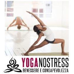 VINYASA YOGA FLOW YOGAFLOW yoganostress centro yoga meditazione rilassamento benessere natura asana gruppo yoganostress lezioni monteverde HATHA